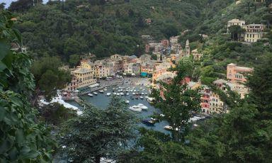 Gamberi, moscardini e Champagne, tra Paraggi e Portofino
