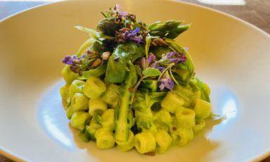 I Tubetti agli asparagi in insalata di Cesare Battisti