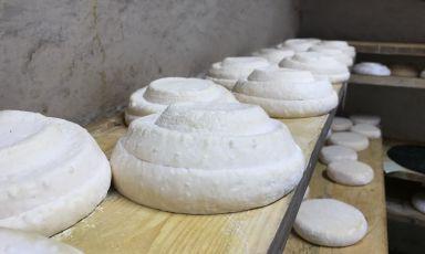 Forme di Montébore stagionano alla Cascina Nerchi, nel Comune di Dernice (Montébore ne è una frazione), provincia di Alessandria. Questo formaggio fino a vent'anni fa era del tutto scomparso, ora è rinato: una storia tutta da raccontare