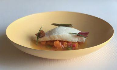 Dotto al vapore, mostarda di zucca, brodo di mare allo zafferano: la ricetta della rinascita di Nicola Dinato