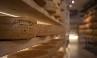 Giolito, cent'anni di passione per il formaggio