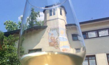 Enjoy! Alla scoperta dell'identità vinicola del Collio