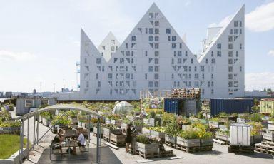 Unica risposta possibile: sostenibilità. La ricetta di Mad About Denmark per il futuro della cucina