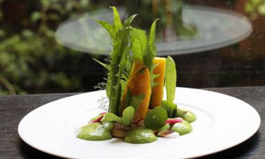 Gourmands and vegetarian cuisine: here's where to eat