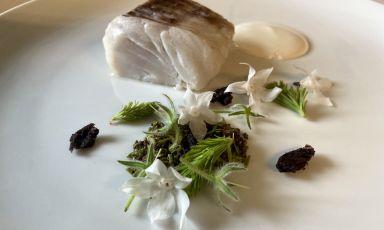 Nasello al vapore, oliva taggiasca, punte di abete e salsa alla mandorla: il piattodella rinascita di Antonio Buono, chef di Casa Buono