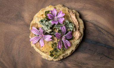 Simone Salvini oggi ci presenta un piatto marchigiano, pensato per la nascita di un nuovo ristorante vegetariano e vegano, il Lord Bio di Macerata