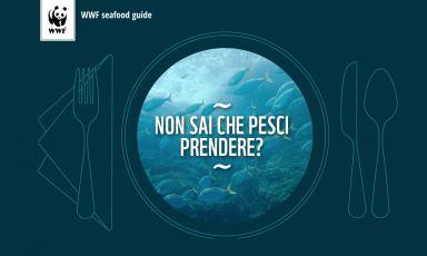 L'homepage dellaseafood guide pescesostenibile.wwf.it, nella quale il Wwf indica le specie a rischio, che dunque non bisognerebbe ordinare (néservire) nei ristoranti
