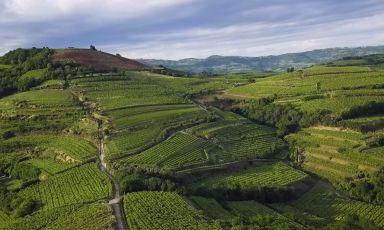 Soave Terroir racconta il territorio e i produttori