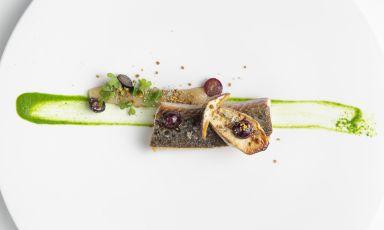 Filetto di trota fario, mosto d'uva, polline: la ricetta dell'autunno di Isa Mazzocchi