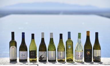 Maremma, la crescita del Vermentino: non solo un vino per l'estate