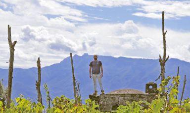 Cantine Matrone, tre le vigne del Vesuvio