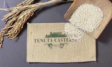 Il Carnaroli Classico di Tenuta Castello, diDesana (Vercelli)