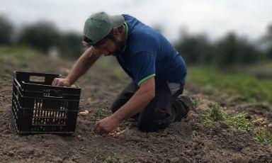 Simone Menichetti al lavoro nei campi dell'azienda Terre Alte, a Pietramala, comune di Firenzuola