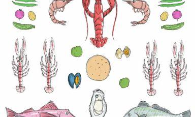 Gli ingredienti del Cappon Magro illustrati da Gia