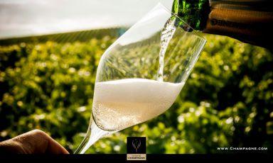 Un bicchiere di Champagne tra le vigne: inizia il nostro viaggio virtuale