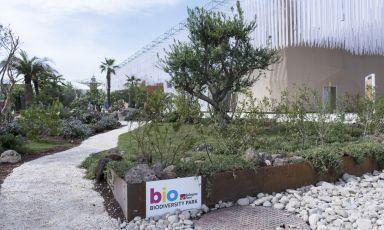 """Questa importante sezione di Expo Milano 2015 vuole offrire ai visitatori un viaggio all'interno delle tante opportunità che la biodiversità e l'agricoltura biologica offrono per declinare il tema dell'Esposizione """"Nutrire il Pianeta, Energia per la Vita"""""""