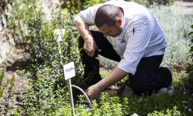 Lo chef Nicola Damiani, dell'Osteria di Passignanoa Tavarnelle Val di Pesa (Firenze), al lavoro nel nuovo orto bioattivo della struttura