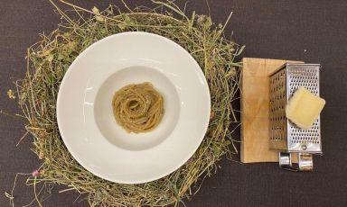 Spaghetti Benedetto Cavalieri ai profumi dello Zoncolan: la ricetta della rinascita di Stefano Basello