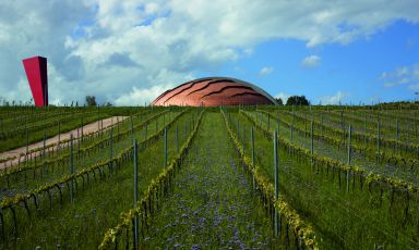The cathedrals of Italian wine