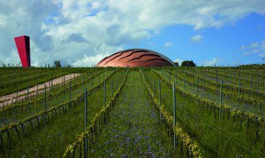 Le cattedrali del vino italiano
