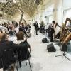 La serata è stata allietata dalle musiche di Fabius Constable & The Celtic Harp Orchestra