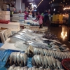 Sullo sfondo, le preziose anguille. Il pezzo più pregiato del mercato? Gli abaloni: 35 euro al chilo