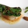 Calamaro, tartare di speck, aglio confit e cavolo riccio
