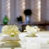 Cioccolato Ivoirecon sedano, finocchio e mela verdeaccompagnato da una sfera di yogurt e zenzero
