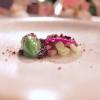 Celery sorbet, barbe brunoise and hazelnuts