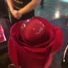L'accoglienza nella Dolça? Una rosa che regge la sferarosa: lychees e fragola