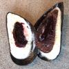 Maquesta volta è un dessert in forma di piccolo sandwich.Pear and roasted kelp ice cream: pera, bilberry (mirtillo nero) ealga kelp arrostita