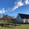 Bucolic scene with incinerator