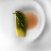 Il menu degustazione più ampio, che abbiamo ordinato (otto portate a 83 euro, altri 35 euro per l'abbinamento vini: rapporto qualità/prezzo encomiabile) non prevedeva il foie gras di cui abbiamo appena parlato (lo abbiamo voluto inserire noi, troppo celebre per non assaggiarlo: e mai scelta fu più opportuna), mentre propone: Foie vegetal (aguacate), jugo de chipirones, acidulado y cilantro (nella foto), sublimazione dell'originale, con le sue stesse consistenze e proprietà organolettiche. L'avocado, cotto al vapore delle sue foglie (dalle quali si ottiene precedentemente un fumetto cui s'aggiunge fumetto di grongo), viene accompagnato da un brodo di calamari, acidulato e speziato al coriandolo. Curiosità: lo chef italiano Matteo Torretta ne ha elaborato una versione simile, con piselli cotti e crudi, scorza di limone e la classica salsa Périgeux.