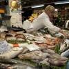 Il banco del pesce in Wagner