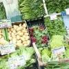 Le verdure della spesa al mercato