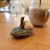 I piatti di Marco Perez nella fotogallery di Tanio Liotta.Si parte conSalmerino e fumo