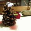 Quattro piatti denominati Miniature Wild. Il primo:Vele di Marzemino conpesto e germogli di pino, servitesulla pigna