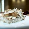 Crostone di pane, burro nocciola, topinambur, aglio in conserva e tartufo bianco d'Alba