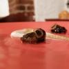 Deliziose Lumache brasate, crema di topinambur, scalogno croccante