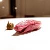 Piccione fondente e pistacchio
