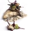 ...prima dell'impiattamento finale:Storione cotto ai carboni, cipolla bruciata e ostriche