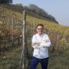 Sgorbini nelle vigne