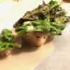 Radice: radice di scorzonera, crema di porcini, salsa al Trebbiano e spinaci crudi e cotti, piatto vegetale di alto livello