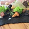 La Forêt (2011),un altro dei super-classici di Colagreco: funghi (spugnole, porcini, champignons), risotto di quinoa, patate Agata, spugna di prezzemolo,salsa di Grana Padano Riservae odori (pimpinella, achillea, oxalis)