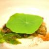 """Piergiorgio Parini, Povero Diavolo, Torriana (Parma)  Brasato di narce(anagramma di """"carne"""", anche detto """"l'animale che non c'è""""). Ilpiatto rievoca alla vista e al palato l'opulenza e corposità di unbrasato pur essendo composto di soli elementi vegetali:la base è un kiwi,glassato con ristretto di verdure, salse fermentate e vino rosso, spolveratocon erbe balsamiche (foto Passione Gourmet)"""