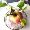 First apple of the new season, la prima mela della nuova stagione, una Golden skin per la precisione, per aprire un pranzo superlativo