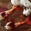 Alcune immagini della straordinaria cena preparata da Jock Zonfrillo al Bulgari di Milano. Qui due appetizer,Gambero rosso e prugne di Davidson e Nuvole di canguro
