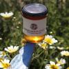 Il miglior miele di Grecia 2016 è Amorgiano, una dolcezza delle Cicladi. Panagiotis Maroulis- un regista televisivo che ha deciso di cambiare vita - lo produce sull'isola di Amorgos. Ha alveari in quattro punti dell'isola: aLagada, dove dominano i profumi disalvia e fiori; a Halara,una scoglieradove vive un'ape locale,con profilo genetico diverso, e il miele ha sentori salati e di timo; sull'isolotto di Nikouria, di nuovo con l'odor di timo; e, un po 'più lontano, sulla piccola isola di Donousa, per la sua erica.Tel: +30.228.5073048