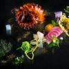 Polpo e alghe, radici e blend Uma-Mia (2016): come anche con le capesante, Apreda non è mai banale