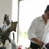 Sullo sfondo, il nippo-brasiliano Roberto Okabe, protagonista con i maki in versione rubitt
